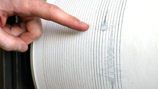 Un séisme de magnitude 4,8 été détecté, lundi 12 février 2018 à 4h08 en Vendée, rapporte le Réseau national de surveillance sismique (RéNass). (Photo d'illustration) (MAXPPP)