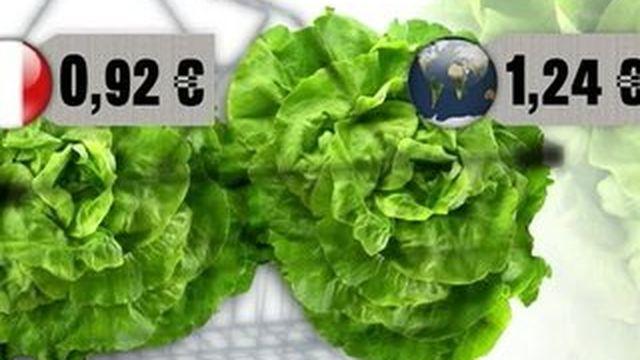 La salade française, star des marchés