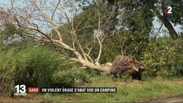 Gard : un violent orage s'abat sur un camping