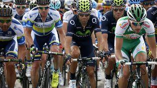 Le peloton du Tour de France, le 29 juin 2013, lors de la première étape entrePorto-Vecchio et Bastia, en Corse. (PASCAL GUYOT / AFP)