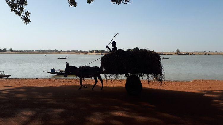 Dans la région de Mopti, au Mali, où les jihadistes ne cessent de gagner du terrain, le 27 juin 2021. (OMAR OUAHMANE / ESP - REDA INTERNATIONALE)