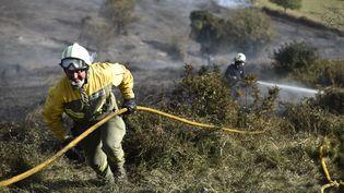 Les feux de forêts, inhabituels à cette période de l'année, ont fait pour l'instant une victime, un pilote qui est mort dans la chute de son hélicoptère. (AFP PHOTO / ANDER)
