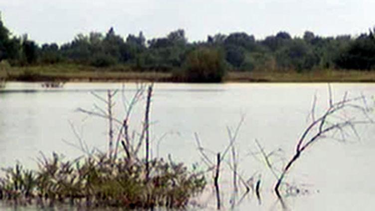 L'étang de Commenailles, dans le Jura, où un père et son fils ont trouvé la mort le samedi 8 août 2009 (© France 3)