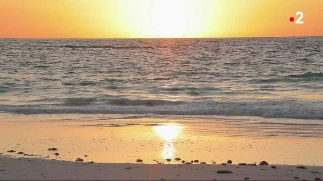 Bahamas : la vie en rose sur l'île de Eleuthera