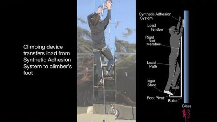 """Une capture d'écran d'une vidéo publiée le 18 novembre 2014 sur le compte YouTube du """"Guardian"""" montre un chercheur américain qui escalade une paroi en verre, comme Spiderman. (GUARDIAN TECH / YOUTUBE)"""