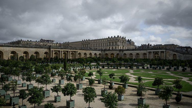 Les parterres de l'Orangerie du château de Versailles, en octobre 2019 (PHILIPPE LOPEZ / AFP)
