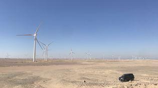 Le parc éolien de Ras Ghareb en Egypte (Engie)