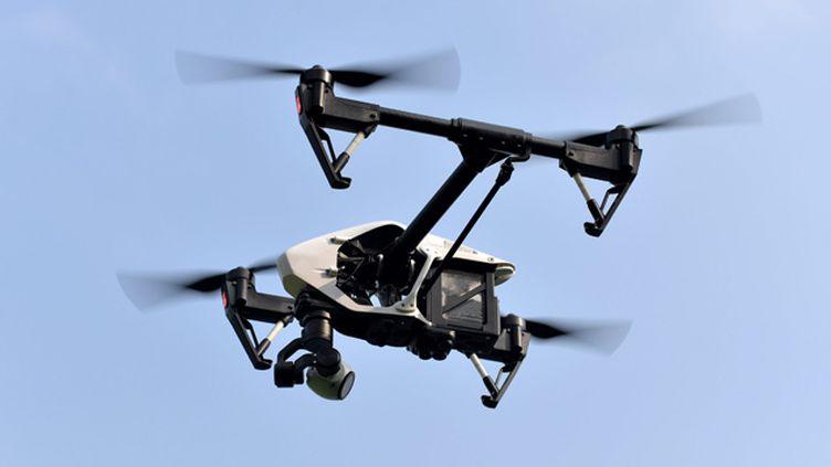 (Un drone a été repéré au-dessus de l'Elysée © MAXPPP)