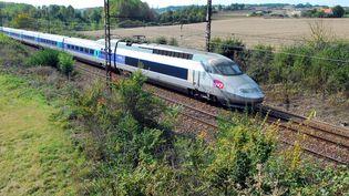 Un TGV sur la ligne Bordeaux-Paris, en 2008. (MAXPPP)