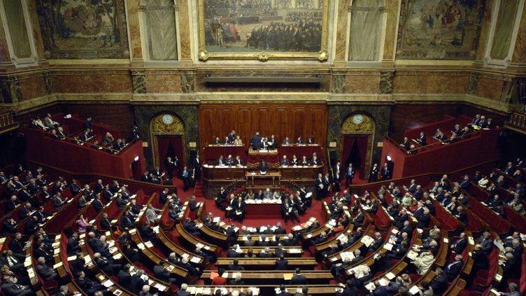 Sous la Ve République, le président élu a toujours gagné les législatives dans la foulée, confortant sa majorité. (ERIC FEFERBERG / AFP)