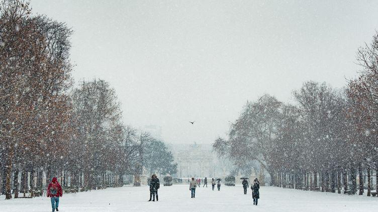 Le jardin des Tuileries sous la neige, à Paris, le 22 janvier 2019. (SIMON GUILLEMIN / HANS LUCAS / AFP)