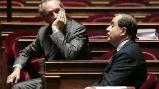 Le sénateur UMP Gérard Longuet,dans l'hémicycle du palais du Luxembourg, à Paris, le 28 octobre 2013. (JACQUES DEMARTHON / AFP)