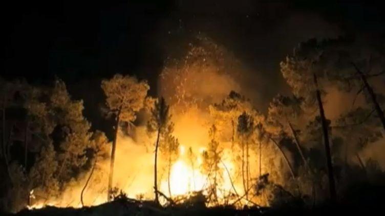 Le feu fait rage près de Torneros de Jamuz,dans la région de Castille-et-Leon (nord-ouest de l'Espagne), le 20 août 2012. (FTVI / APTN)