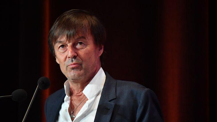 Nicolas Hulot, le ministre de la Transition Ecologique et solidaire. (FRANCOIS PAULETTO / CITIZENSIDE)