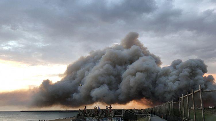 L'incendie de la forêt de Chiberta vu de la plage d'Anglet (Pyrénées-Atlantique) le 30 juillet 2020. (ANTHONY MICHEL / RADIOFRANCE)