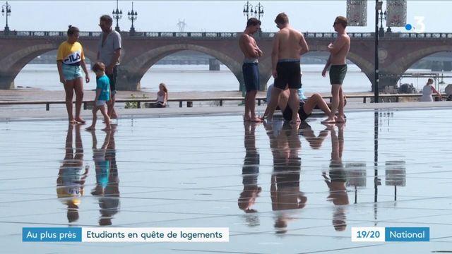 Bordeaux : étudiants en quête de logement