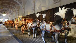 Les carrosses du château de Versailles, 2016  (BERTRAND GUAY / AFP)