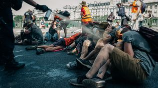 Des militants du collectif Extinction Rébellion évacués du pont de Sully, à Paris, le 28 juin 2019.   (MATHIAS ZWICK / HANS LUCAS / AFP)