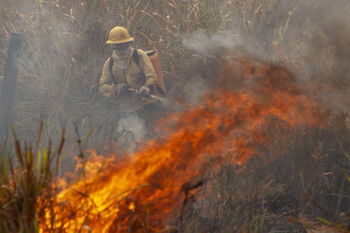 Des pompiers éteignant un feu sur la communeNovo Progresso, dans le nord du Brésil, le 21 août 2020, malgré le décret interdisant les brûlis agricoles. (ERNESTO CARRICO / NURPHOTO)