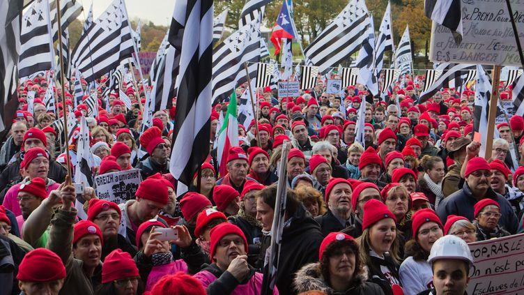 Manifestation de Bonnets rouges, le 30 novembre 2013, à Carhaix (Finistère). (JOSÉ MARIA GIL PUCHO / CITIZENSIDE / AFP)