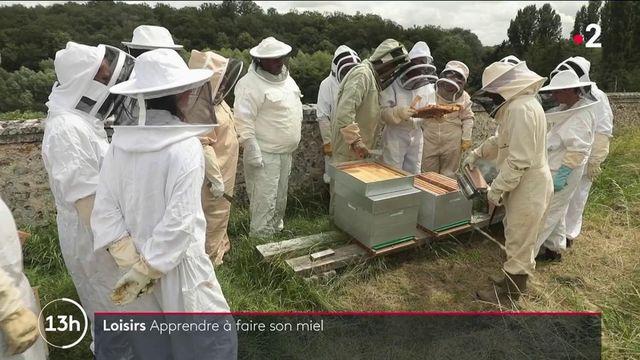 Miel : à l'école des apiculteurs convertis