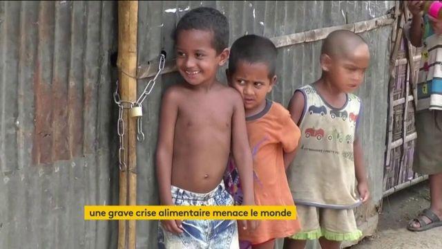 23h: Le coronavirus provoque une crise alimentaire mondiale