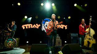 Stray Cats en concert à Berlin - 3 Juillet 2019 (DIRK PAGELS/SULUPRESS.DE / SULUPRESS.DE)