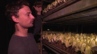 À Paris, l'agriculture se développe dans des lieux insoupçonnés, notamment dans un parking souterrain désaffecté, où se trouve la ferme urbaineLa Caverne. (Capture d'écran France 3)