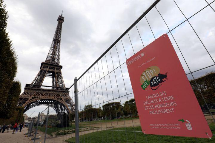 Une campagne de lutte contre les rats sur le Champ-de-Mars, le 29 septembre 2017 à Paris. (LUDOVIC MARIN / AFP)