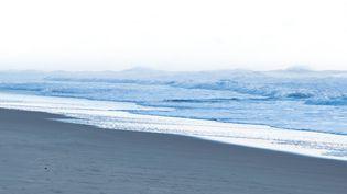 Un promeneurcontemple l'océan Atlantique sur la plage de Lacanau (Gironde), en octobre 2017. Photo d'illustration. (MELVIN TURPIN / FRANCE-BLEU SUD LORRAINE)