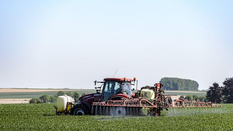 Une étude de l'Inserm révèle que certains fongicides, pulvérisés comme ici par un tracteur surun champ, seraienttoxiques pour l'Homme. (JEAN-MARC QUINET / BELGA MAG)
