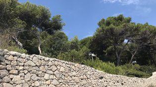 Derrière les hauts murs des villas du Cap d'Antibes, des caméras de surveillance. (ABDELHAK EL IDRISSI / RADIO FRANCE)