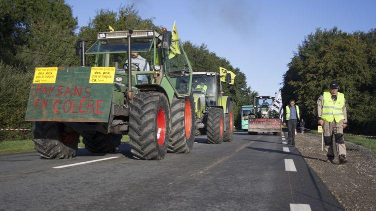 Des agriculteurs manifestent à Rennes (Ille-et-Vilaine), le 15 septembre 2015. (CITIZENSIDE / MARTIN BERTRAND / AFP)