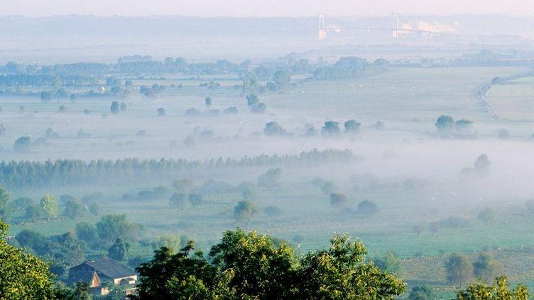 Le marais Vernier est une zone humide de 4 500 hectares située dans l'Eure. ( HEMIS.FR / AFP )