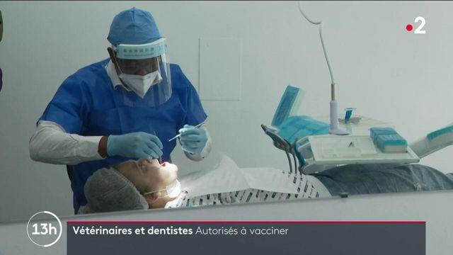 Covid-19 : les dentistes et vétérinaires peuvent désormais vacciner