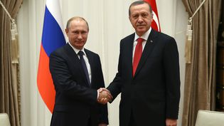Vladimir Poutine (à gauche) et Recep Tayyip Erdogan, à Ankara (Turquie), le 1er décembre 2014. (TURKISH PRESIDENTIAL PALACE / MAXPPP)