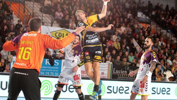 Lors de la victoire de Saint-Raphaël sur Nantes (23-21), comptant pour la 7e journée de D1. (PHILIPPE ARNASSAN / MAXPPP)