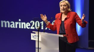 Marine Le Pen, le 26 mars 2017, en meeting à Lille (Nord). (ALAIN JOCARD / AFP)