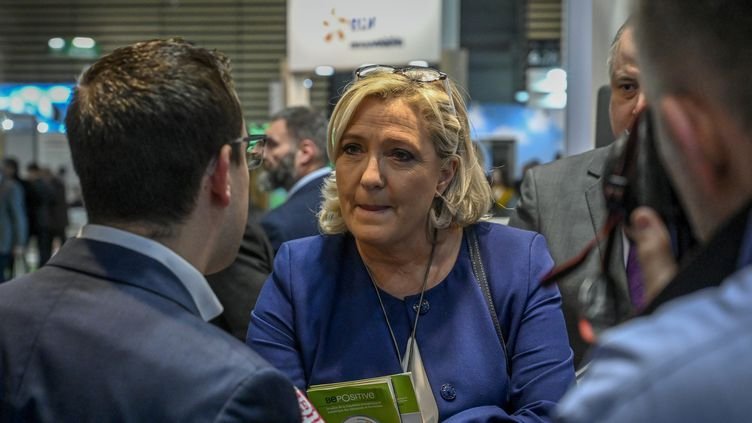 La présidente du Rassemblement national Marine Le Pen, le 14 février 2019. (JEAN-PHILIPPE KSIAZEK / AFP)