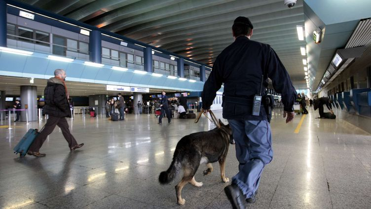 Un chien renifleur dans leterminal C de l'aéroport international Rome Fiumicino, le30 décembre 2009. (ANDREW MEDICHINI/AP / SIPA )