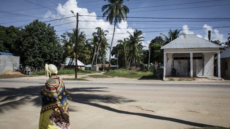 La ville de Palma, au Mozambique, le 16 février 2017. (JOHN WESSELS / AFP)