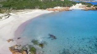 La plage de Budelli, en Sardaigne (Italie). (FRANCE 2)