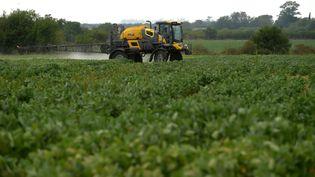 Un épandage d'herbicide sur une exploitation agricole, en Argentine, le 8 février 2018. (PABLO AHARONIAN / AFP)