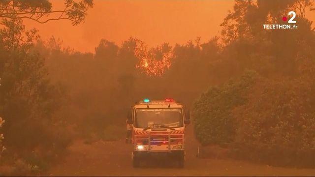 Australie : un gigantesque incendie s'approche de la ville de Sydney