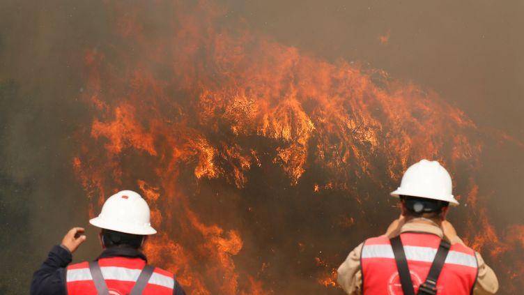 Deux pompiers observent les flammes qui ont détruit une centaine de maisons. (RODRIGO GARRIDO / REUTERS)