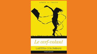 """Livre : """"Le cerf-volant"""", ou comment l'éducation peut changer des vies (Capture d'écran franceinfo)"""