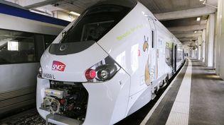 Une des rames TER Regio 2N de Bombardier, présentée le 29 avril 2014 à la gare Vaugirard, à Paris. (FRANCOIS GUILLOT / AFP)