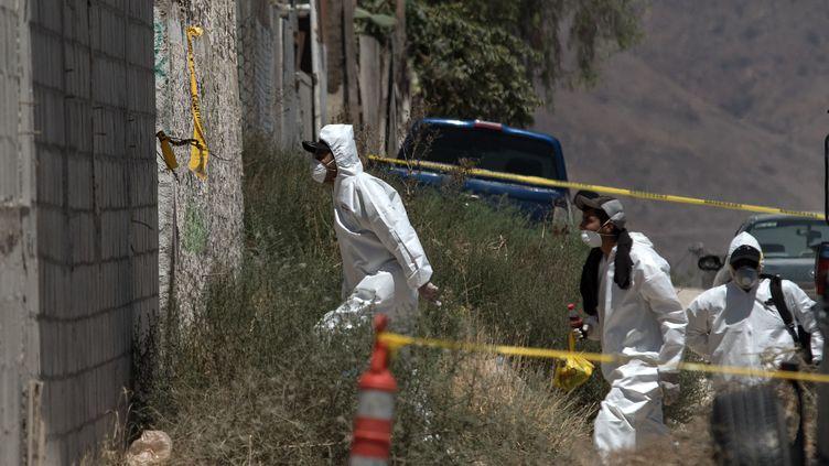 Intervention de la police scientifique mexicaine surun charnier découvert à Tijuana, le 17 août 2017. (GUILLERMO ARIAS / AFP)