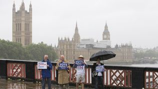 """Des partisans du """"Remain"""" militent pour le maintien du Royaume-Uni au sein de l'Union européenne, à Londres, le 20 juin 2016. (JUSTIN TALLIS / AFP)"""