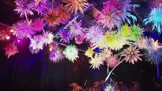 À Mulhouse (Haut-Rhin), les amoureux des jardins ont rendez-vous au festival Folie'Flore du jeudi 7 octobre au dimanche 17 octobre. Une flânerie au cœur de 10.000 mètres carrés de végétaux mis en valeur par des jeux d'eau et de lumières. (CAPTURE ECRAN FRANCE 2)